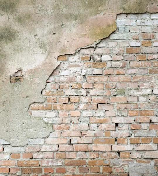 Vliestapete abgeblätterte Wand 225x250
