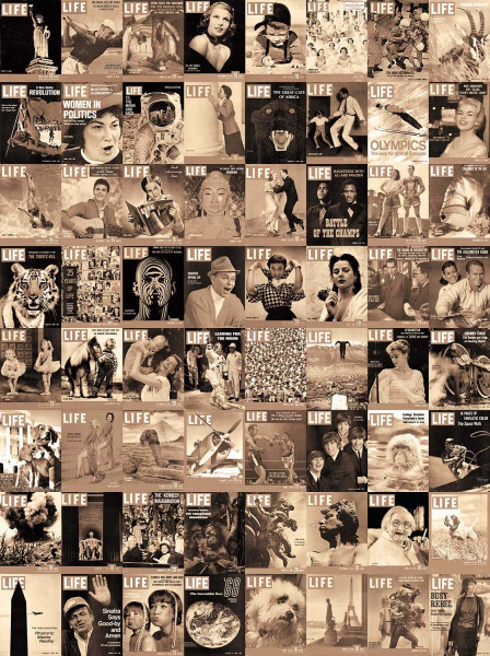 Kreative Collage Life Titelblatt Designer Tapete