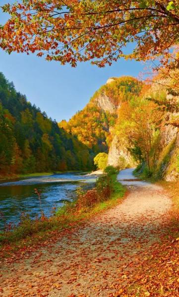 Vlies Fototapete Am Fluss 150x250