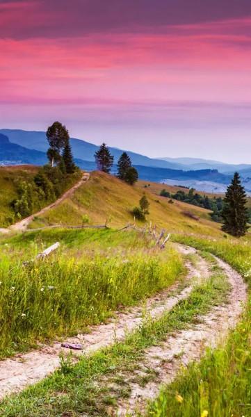 Vlies Fototapete blühende Hügel 150x250