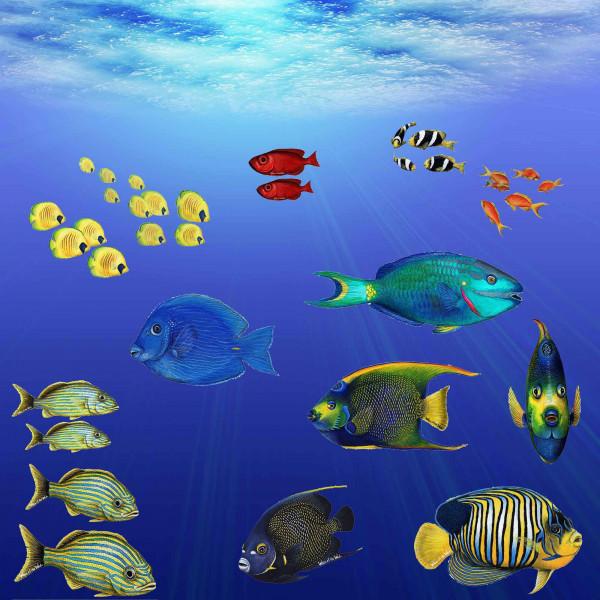 Walls of the Wild Wandsticker Unterwasserwelt tropische Fische Set