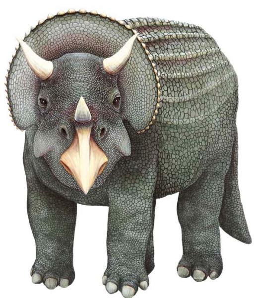 Wandsticker Dinosaurier Triceratops groß