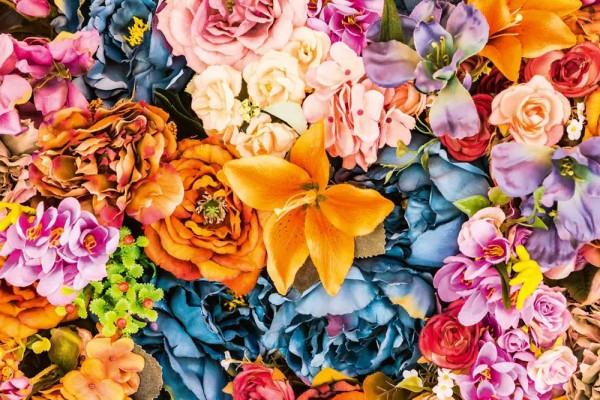 Vliestapete Trockenblumen 375x250