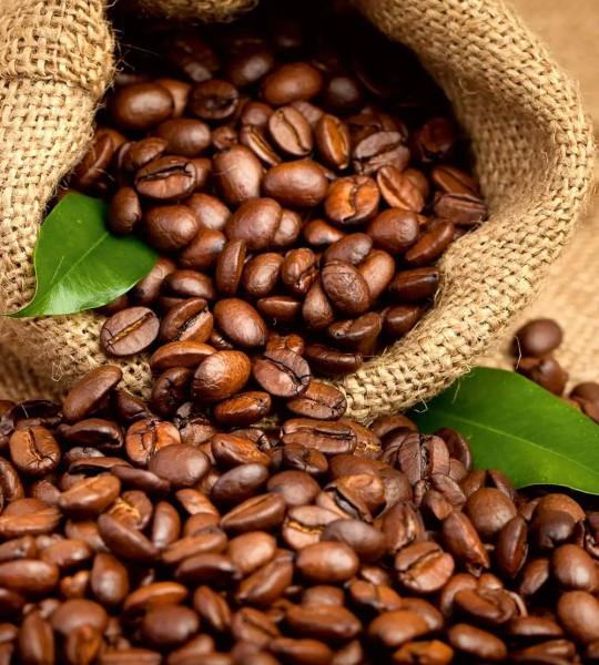 Vliestapete Kaffeebohnen 225x250