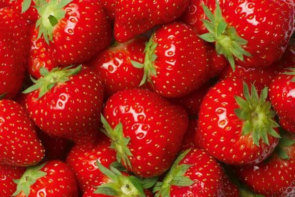 Vliestapete Erdbeeren 375x250