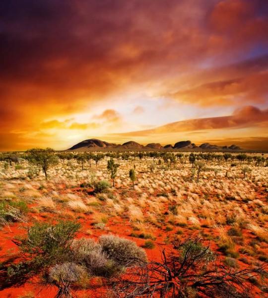 Vliestapete Australien 225x250