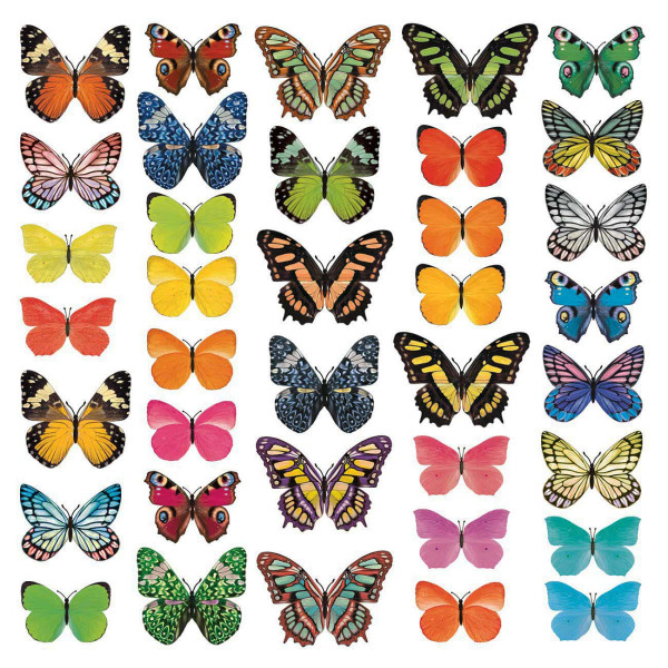 Wandsticker Schmetterlinge Naturfarben