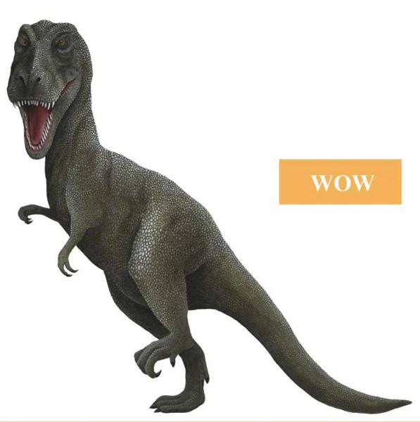 Wandsticker Dinosaurier Tyrannosaurus Rex WOW Größe
