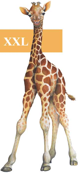 wandsticker dschungelwelt junge giraffe tapetenwelt. Black Bedroom Furniture Sets. Home Design Ideas