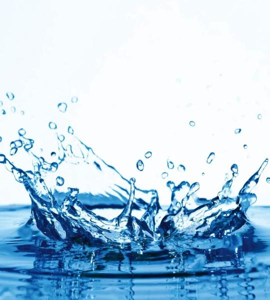Vliestapete Splash 225x250