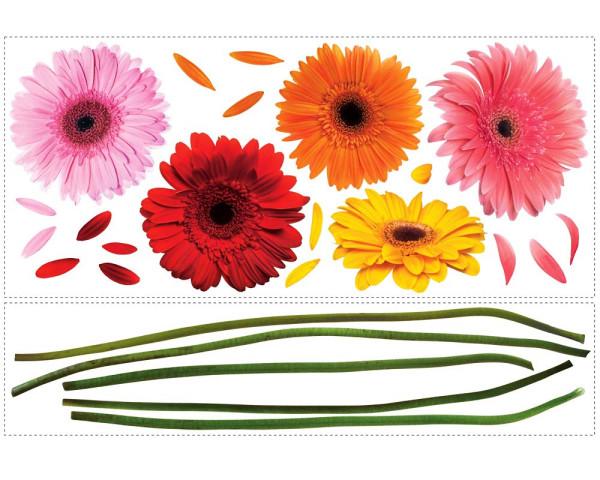 Wandsticker Gerbera Blumen