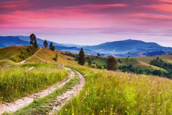 Vliestapete blühende Hügel 375x250