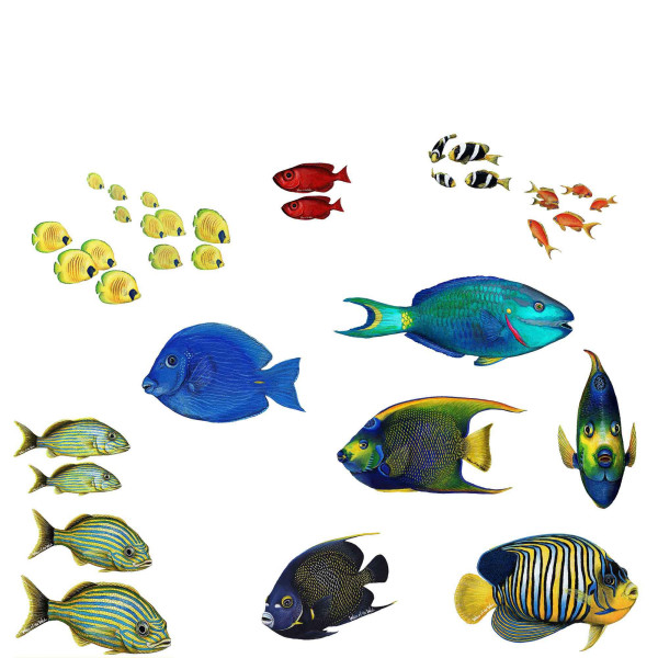 Walls of the Wild Wandsticker Unterwasserwelt tropische Fische Set