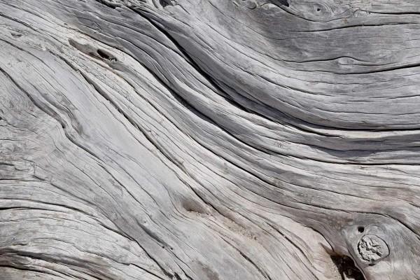 Vliestapete Holzstruktur 375x250