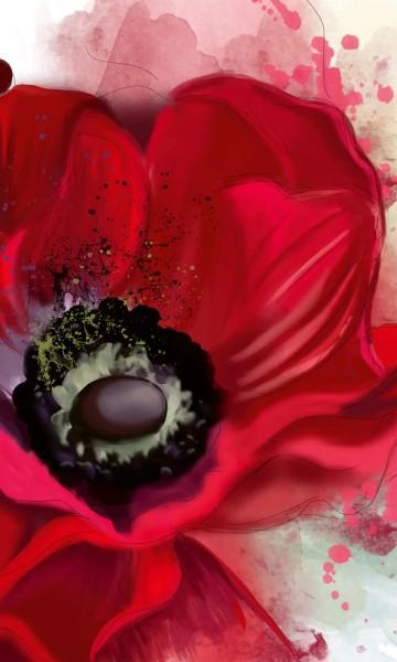 Vlies Fototapete Mohnblüte 150x250