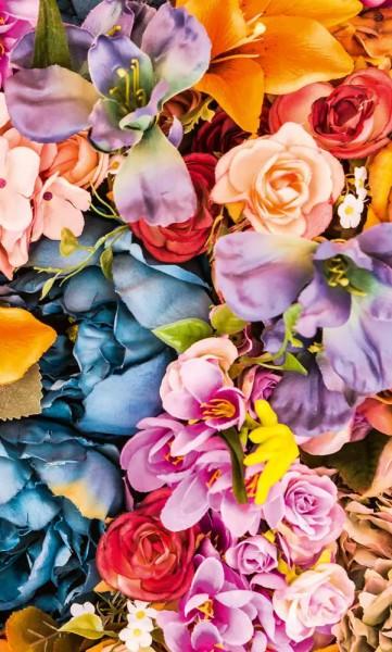 Vliestapete Trockenblumen 225x250