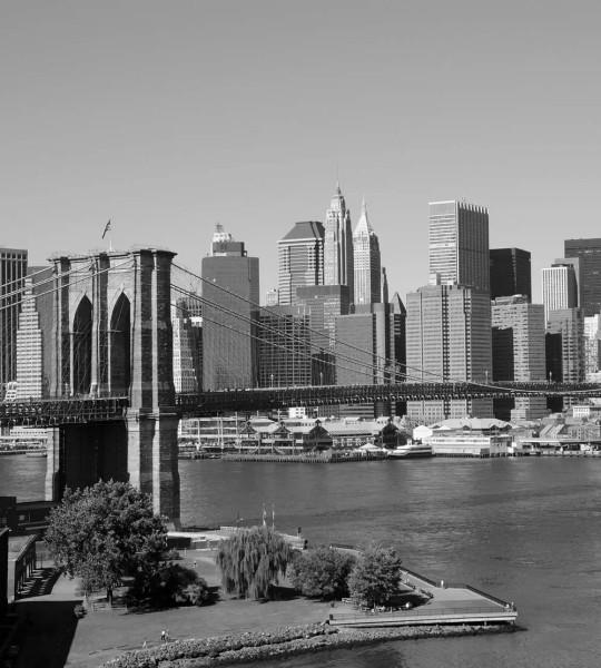 Vliestapete Manhattan Skyline 225x250