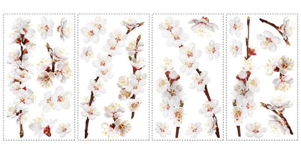 Wandtattoo Hartriegel Strauch Blüten